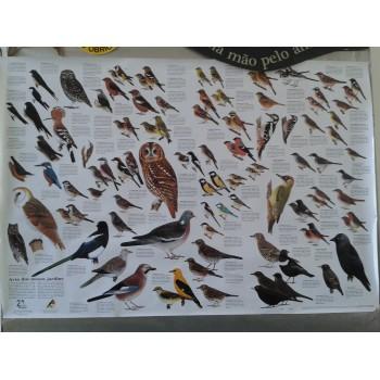 http://loja.quercus.pt/187-254-thickbox/aves-dos-nossos-jardins.jpg